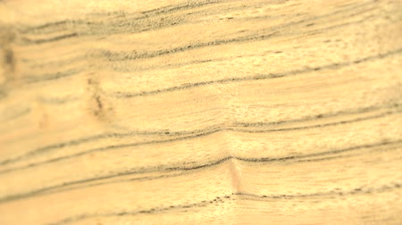 filipíny : (Perfect Loop) Wood Sheet of Paldao A closeup view of this paldao wood from Davao, Philippines. Dostupné videozáznamy