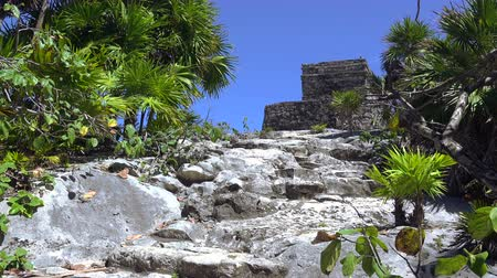 cíle : A static shot of the path leading the way to the blue sky gods and temple at Tulum, Mexico.