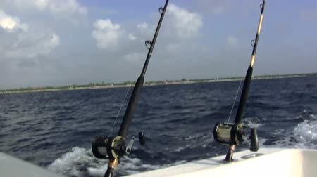 рыболовство : Fishing Poles on Chartered Boat. A pair of fishing poles are bobing up and down in heavy seas trolling for fish.
