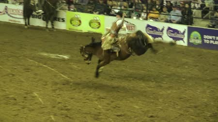 chapéu : Bucking Bronco Rider Succeeds. An 8 second plus run on a wild horse during an indoor Rodeo.