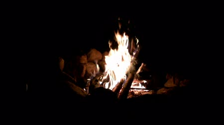 siyasi : Perfect Loop Campfire Night Shot. The perfect campfire contained by a stone ring at night on a chilly campers evening. Stok Video