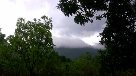 filipíny : Perfect Loop Rainy Jungle Mountain Tropics. Welcome to the jungle we got fun and games.