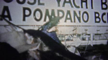 valóság : FT. LAUDERDALE, USA - 1957: Productive fishing grounds showcasing a sailfish at the harbor dock.. Unique vintage 8mm film home movie professionally cleaned and captured in 4k 3840x2160 UHD resolution plus post processing including cinematic retro color co