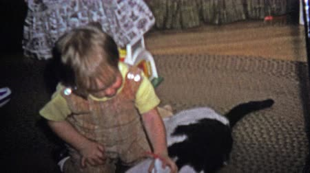 kotki : BOULDER, CO. USA - 1973: Boy bothering a patient cat with new Christmas toy. Unique vintage 8mm film home movie professionally cleaned and captured in 4k 3840x2160 UHD resolution plus post processing including cinematic retro color correction, manual spee