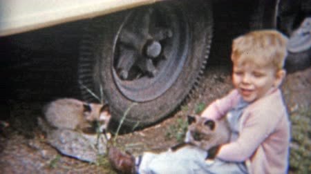 1963: Blonde boy rescues cats trapped under truck tires.