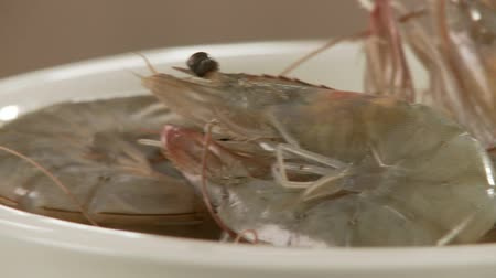 short clip : Fresh prawns