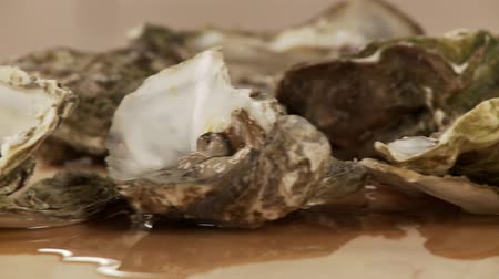 istiridye : An opened oyster