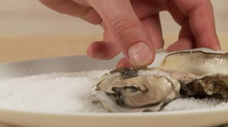 common salt : Fresh, opened oysters being arranged in a plate of sea salt Stock Footage