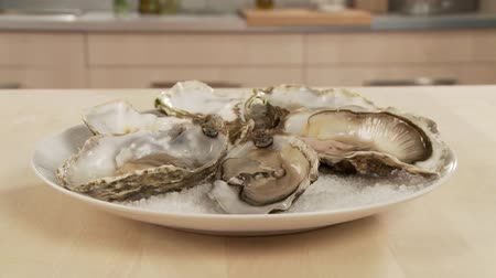 common salt : Fresh oysters being on a plate of sea salt Stock Footage