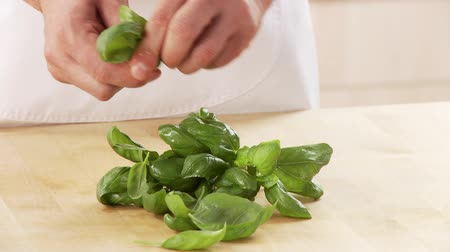short clip : Basil leaves being torn from the stem