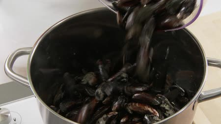 puhatestű : Mussels being added to a pot with olive oil and garlic