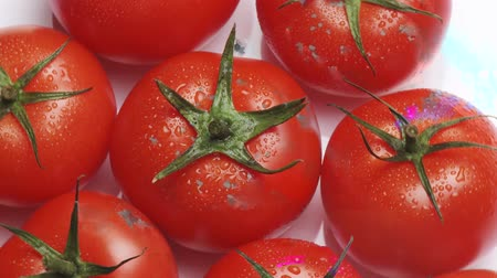 outlinable : Rotating tomatoes
