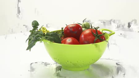 outlinable : Ripe & unripe tomatoes with stem, leaves & flowers in colander