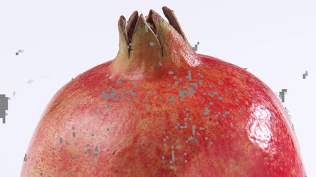 entire : A pomegranate Stock Footage