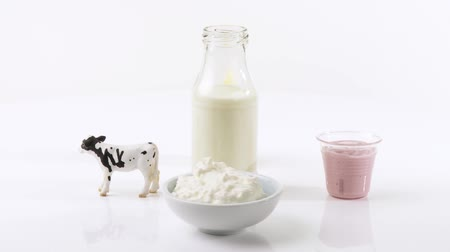 йогурт : Berry yoghurt, Emmental cheese, toy cow, cottage cheese & milk