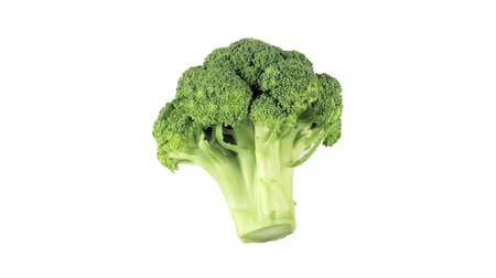 outlinable : A head of broccoli Stock Footage