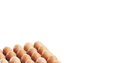 outlinable : Brown eggs in egg box Stock Footage