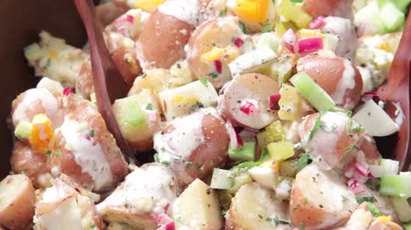specialties : American potato salad Stock Footage
