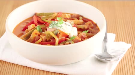 specialties : Solyanka (Eastern European meat stew with vegetables) in a soup bowl Stock Footage