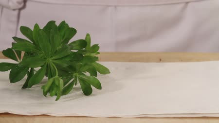 basic technique : Woodruff being placed on kitchen paper