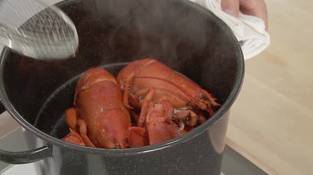 Lifting steamed lobster from pot