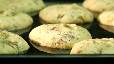 keksz : Biscuits baking in the oven (time lapse) Stock mozgókép