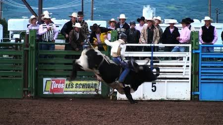 býci : Shot of a bull rider competing at a rodeo in Utah Dostupné videozáznamy