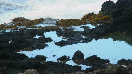 descanso : Small waves splash over moss and volcanic rocks into small pools of water at shore on Hawaiian Island.