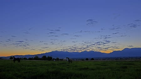 konie : Time-lapse shot of a horse pasture in Utah with lens flare