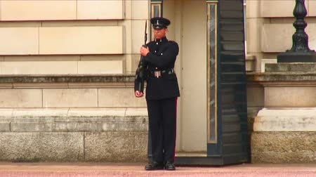 buckingham palace : Sentry in front of Buckingham Palace in London, England performing movements with his firearm, stepping ceremoniously.