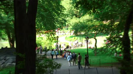 центральный : Zoom in shot of a walkway in Central Park, New York City.