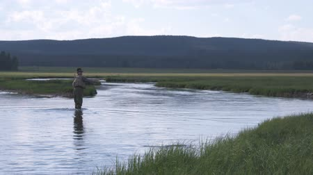 waders : Wide shot of man fly fishing in stream Stock Footage