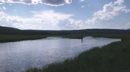 waders : Far shot of man fly fishing in a stream