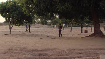 solo : Wide shot of kids playing on dirt ground under trees Stock Footage