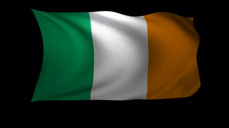 flaga : A 3D Rendering of the flag of Ireland waving in the wind. The background is an Alpa Channel.