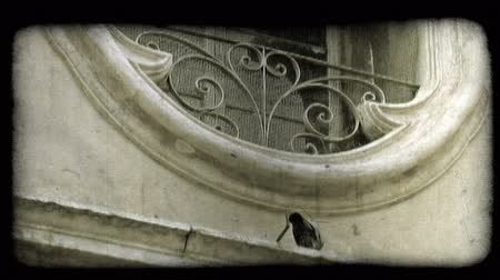 europa : A pigeon walks back and forth outside of a window on an Italian building. Vintage stylized video clip.