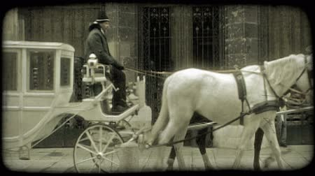 télen : White fairy-tale-like carriage with narrow wheels, driven by a darkly dressed conductor and pulled by two large horses, one white and one dark-colored, past St. Stephens Cathedral gate in Vienna, Austria during winter. Vintage stylized video clip. Stock mozgókép