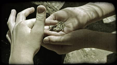 toad : Closeup of children holding frog and petting it next to a rock pool in Southern Utah. Vintage stylized video clip.