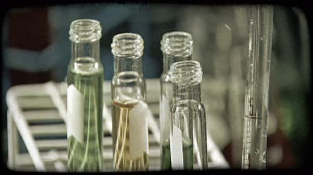 kísérlet : Hand places test tines filled with colored chemicals into sorting rack in lab. Vintage stylized video clip.