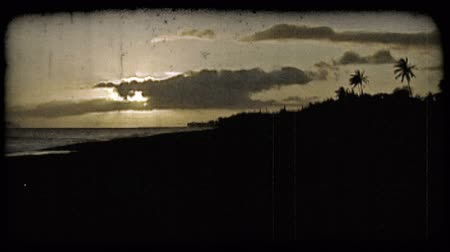 тропический : Sillouetted palm trees against beautiful Hawaiian sunset overlooking island and beach and coastline. Vintage stylized video clip.