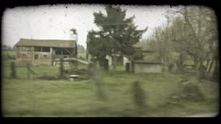 сбор винограда : Shot from the window of a train in italy. Vintage stylized video clip.