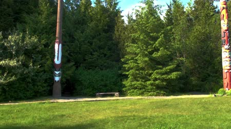 aboriginal : A panning shot from right to left of a house and colorful totem poles in Totem Bight State Park. Grass, trees, and some paths also visible. Captured on a sunny day on June 5, 2009. Stock Footage