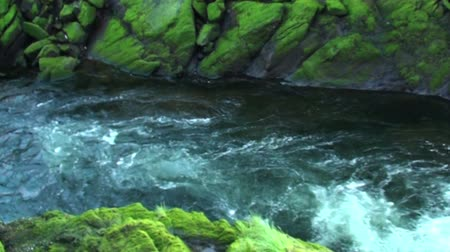 alasca : Shot of the quickly moving water of Ketchikan Creek bounded by green mossy rocks. At Creek Street Ketchikan, Alaska.