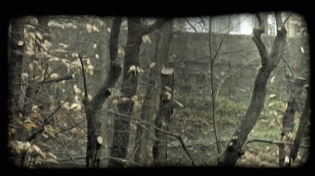minério : Pan right shot of vegetation and a building in Italy. Vintage stylized video clip.