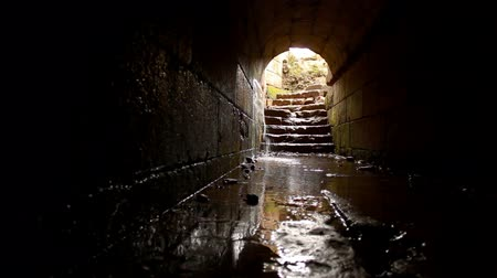 sel : Underground tunnel at the Place of Agrippa in Banias, Israel, in the Golan Heights. Water is pouring through a crack in the wall flooding the passageway. The light is coming down through an archway leading to a curved stone stairway out into the open pala Stok Video