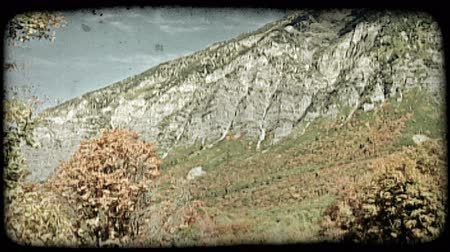 sallamak : Tilt on mountainside and valley covered with colorful autumn trees in Rocky Mountains. Vintage stylized video clip.