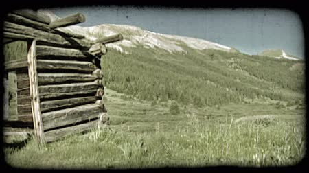запад : Slow pan of old, abandoned log cabin with no roof or doors surrounded by grasses and wildflowers with mountains and pine-tree filled hills in background. Vintage stylized video clip.
