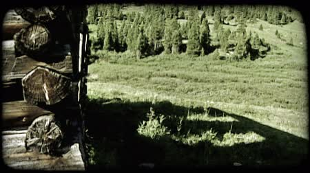 fülke : Slow tilt from grassy hill up corner of old abandoned cabin showing layered logs to top of cabin with mountains and pine trees in background. Vintage stylized video clip. Stock mozgókép