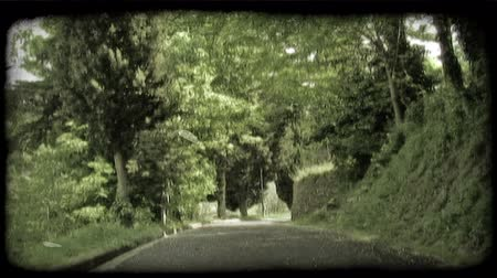 tahıllar : Shot of a street in Italy covered in shadows by trees that line the sides. Vintage stylized video clip.