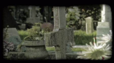 gravestone : A shot of Italian tombstones and flowers. Vintage stylized video clip.